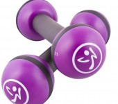 Zumba 2.5 pound toning sticks