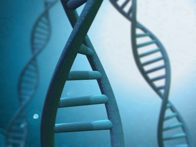 Ageing is in the genes: it is inevitable but you can slow it down a bit!